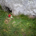 Stonehenge Winter Solstice 2014