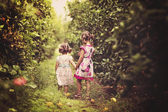 Into the unknown together (Wojtek Piatek) Tags: girls portrait orange orchard zeiss135 sonya99