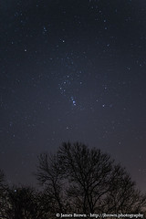 Orion (J. Brown Photography) Tags: trees brown stars photography james photo sony nebula astrophotography orion alpha
