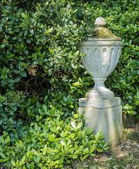 20150611-HintonAmpner-P1010985.jpg (cybersmudger) Tags: england urn unitedkingdom hampshire gb nationaltrust hintonampner alresford