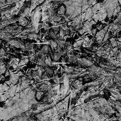 Daun - Mandershe DSCF5746ir_2 (Denkrahm) Tags: bw stone forest dark roots eifel denkrahm compostion rhizome schiefer interconnections rizome lieserpad