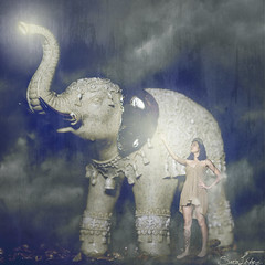 270/365 (Sariixa) Tags: 365 me yo myself selfportrait selfie autorretrato autoretrato autoportrait portrait retrato elefante elephant etnic tnico square cuadrado girl chica luz light magic magia nubes clouds nublado cloudy night noche strongth fuerza power animal photoshop photomanipulation fotomanipulacin fotomontaje sarixa fineart art arte