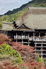 Kiyomizu-dera in Autumn (PV9007 Photography) Tags: autumn red rot fall leaves japan maple kyoto herbst momiji    kansai kiyomizudera  herbstlaub japanischer 2015  ahorn laubfrbung herbstlaubfrbung