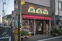 toy shop (kasa51) Tags: sign japan typography storefront toyshop izu shimoda izupeninsula