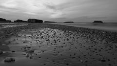 Scars of war (Rind Photo) Tags: beach ww2 war bunker germans occupation bw battery vigs denmark hanstholm