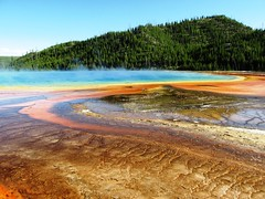 Grand Prismatic Spring (brewbooks) Tags: sw16 taxonomy:kingdom=bacteria bacteria taxonomy:phylum=cyanobacteria cyanobacteria taxonomy:class=cyanophyceae cyanophyceae taxonomy:order=oscillatoriales oscillatoriales taxonomy:family=phormidiaceae phormidiaceae taxonomy:genus=phormidium phormidium inaturalist:observation=3670657