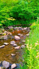 Fallasburg Park (neukomment) Tags: westmichigan stream creek stones rocks trees fallasburgpark michigan puremichigan android ztez958 scenicmichigan grandriverwatershed parks usa