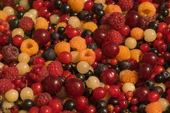 #81 - Nature's Jewels (Keeperofthezoo) Tags: alberta canada berries cherries closeup currants delicious food fruit macro raspberries saskatoonberries yummy