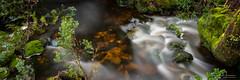 Silken Stream (Suburbanvoodoo) Tags: panorama mountain landscape stream tasmania cradle