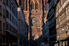 Cathedral Facade Day - Strasbourg, France (N+C Photo) Tags: d800 europe france nikon strasbourg alsace frankrijk francia old history historic medieval dslr catholic cathedral facade structure structural structura city urban gothic german 1635f40 travel photography adventure earth life culture discover world explore global learn civilization tierra mundo tourism holiday viaje aventura explorer vacaciones vida mundial image visual photo best nikkor