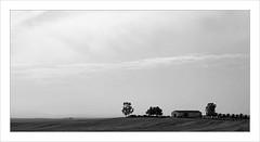 Plaine andalouse / Espagne (PtiteArvine) Tags: plaine nb bw andalousie espagne spain