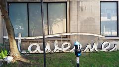 Taverne Monkland Sign (Exile on Ontario St) Tags: tavernemonkland montreal sign affiche enseigne taverne monkland ndg notredamedegrce tavern bar pub notre dame grace grce notredamedegrace old used vintage retro usag wornout damaged ancient ancien letters lettres cursive neon signe restaurant commerce business store abandoned abandonn monklandtaverne monklandtavern bastardlettering bastard lettering