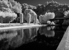Reflections of pool DSC_5352 (Bruce_of_Oz) Tags: filoli gardens pool digital infrared reflection