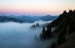 Hurricane Ridge Sunset 2 (ebhenders) Tags: olympicnationalpark washington hurricane ridge sunset fog mountains color