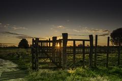 tranquera (Alvaro Franco 64) Tags: sunset atardecer grass campo tranquera sun sol sky cielo nubues clouds colonia uruguay