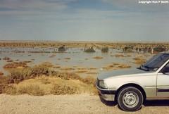 213_02 (liverpolitan.) Tags: flooding desert road deir ezzor palmyra syria m20