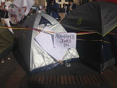 (carocampalans) Tags: paz polticas democracia movimientossociales opininpblica