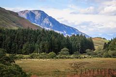 _MG_5065 (Flyfifer Photography) Tags: greatbritain highland invernessshire knoydart places scotland unitedkingdom