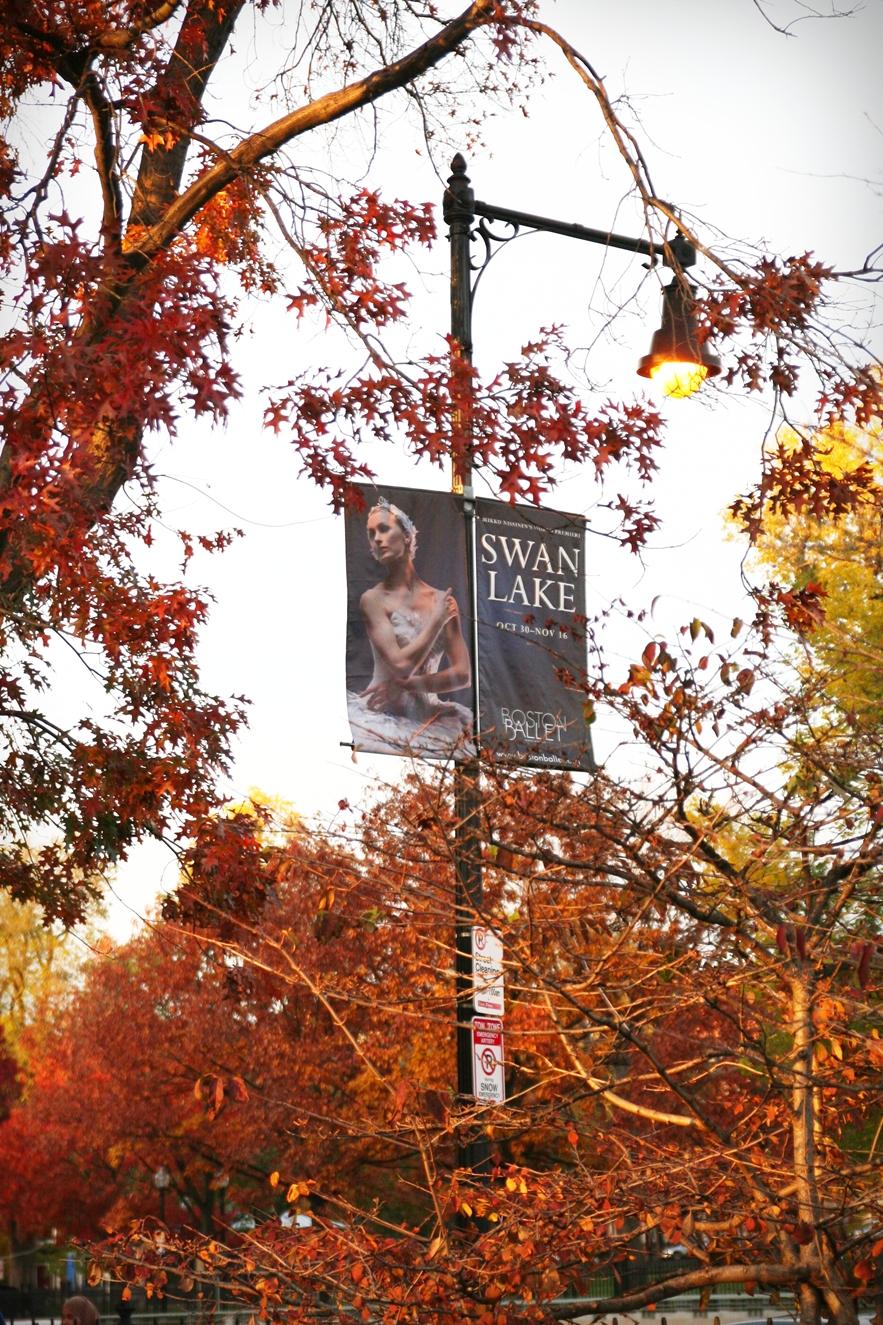 波士頓秋天 boston-common-public-garden-autumn-15