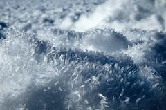 Le Revard (Savoie) (fjozon) Tags: snow montagne vacances neige paysages snowscape hollidays xe2 fjozon
