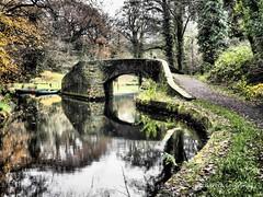 Aberdulais Basin 19th Nov 2014 (8) (Gareth Lovering Photography 3,000,594 views.) Tags: nov wales port canal riverside olympus basin 19th talbot omd lovering 2014 em1 neath aberdulais