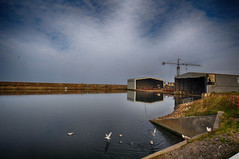 Buckie Harbour (27)