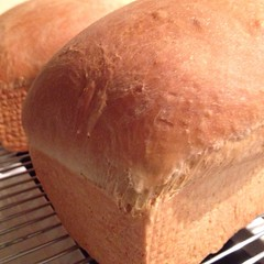 "This is the beginning of a late night farmhouse kitchen recipe experiment. I have high hopes that a bit of this homemade bread will become the most delicious dressing that I have ever made. If it does, I will be able to share the recipe with you in time f • <a style=""font-size:0.8em;"" href=""http://www.flickr.com/photos/54958436@N05/15712678486/"" target=""_blank"">View on Flickr</a>"