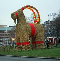 I´m back (crusaderstgeorge) Tags: gävlebocken gävle bocken sverige 2014 christmas goats wintertime gävlebockengävle strawgoat gävleborg sweden crusaderstgeorge