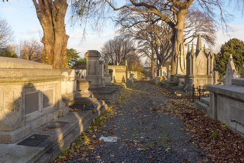 Mount Jerome Cemetery & Crematorium is situated in Harold's Cross Ref-100457