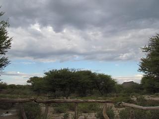 Botswana Hunting Safari 37