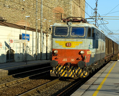 E655 265 (westrail) Tags: italien italy lens nikon europa europe fotograf photographer tuscany nikkor dslr digicam f28 toskana digitalkamera d300 objektiv sangiovannivaldarno youmademyday omot afs2870 e655265 andreasberdan