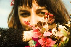 Gama de Texturas - Vvian Albanus (Marcelo Souza Koetz) Tags: flowers flores colors girl forest vivian garota floresta albanus phantasmagorics