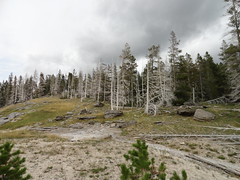 Yellowstone National Park, Wyoming (richardblack667) Tags: landscapes parks pools yellowstone wyoming nationalparks hotsprings geysers