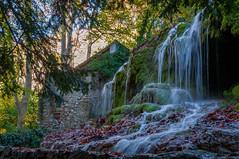 vallée de St Pons 16-11-14 - 11 (aups83) Tags: france nature automne nikon rivière paca provence parc forêt panoramique ruisseau d90 saintebaume saintpons gémenos forêtdautomne valléedesaintpons