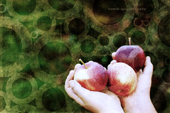 Thanksgiving (mariola aga) Tags: thanksgiving texture girl hands quote background wishes apples happythanksgiving thegalaxy goldenart