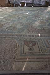 Mount Nebo Mosaics // Trip to Jordan (Merlijn Hoek) Tags: trip vacation countryside vakantie nikon fotografie middleeast hills jordan holliday jordanien d800 shorttrip merlijn mountnebo coutry fotograaf toerist heuvels jordani middenoosten merlijnhoek nikond800
