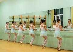 20141217-_D8H6687 (ilvic) Tags: dance danza danse tanz dans taniec