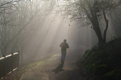 30/12/14: JOGGING dans le brouillard - Parc des Ulis. (jmsatto) Tags: parc brouillard essonne lesulis