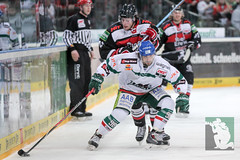 """DEL15 Kölner Haie vs. Augsburg Panthers 10.12.2014 077.jpg • <a style=""""font-size:0.8em;"""" href=""""http://www.flickr.com/photos/64442770@N03/16029301235/"""" target=""""_blank"""">View on Flickr</a>"""