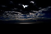 """Un po' di luce (wallace39 """" mud and glory """") Tags: venice light sea sky italy clouds italia nuvole mare seagull lagoon cielo laguna venezia luce gabbiano rememberthatmomentlevel1 rememberthatmomentlevel2"""