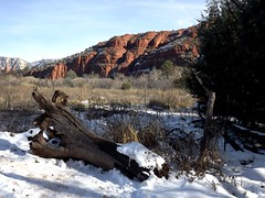 snow at Red Rock Crossing state park (h willome) Tags: statepark arizona sedona 2015 redrockcrossing