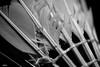 Broken Shuttle (mistersteeb) Tags: macro closeup blackwhite feathers shuttle badminton canoneos600d mistersteeb stevecannings