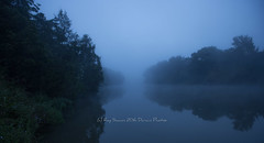 A Foggy Wilson River (Ray Swann) Tags: new water fog wales river south bank australia wilson banks lismore