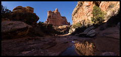 Afternoon in Elephant Canyon (doug k of sky) Tags: