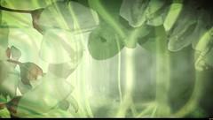 Nature et pollens (17) (Sebmanstar) Tags: travel france flower color nature fleur les digital forest alpes french landscape photography photo europa europe pentax creative lac creation cote provence paysage campagne digne couleur ballade fort bains dazur pollens