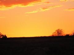 Setting Sun 4 (geoffleppard1) Tags: nature landscape texas country fujifilm roadside westtexas xs1