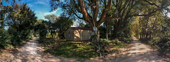Luces de Entre Ros (emiliokuffer) Tags: road old trees light shadow house argentina field rural vintage countryside day arboles camino pano wide cottage wideangle panoramic caminos adobe iphone 5s alberdi oroverde