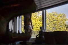 Chomp (quinn.anya) Tags: chomp dinosaur nutcracker balloon window trees