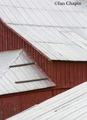 Barn Abstract (Ian Chapin) Tags: roof abstract metal washington redbarn palouse metalroof ianchapin copyrightianchapin