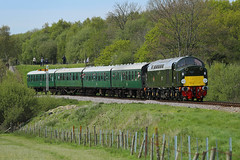 D213 Andania @ Corfe Castle (daveymills31294) Tags: castle diesel railway class 40 corfe gala swanage 2016 40013 d213 andania